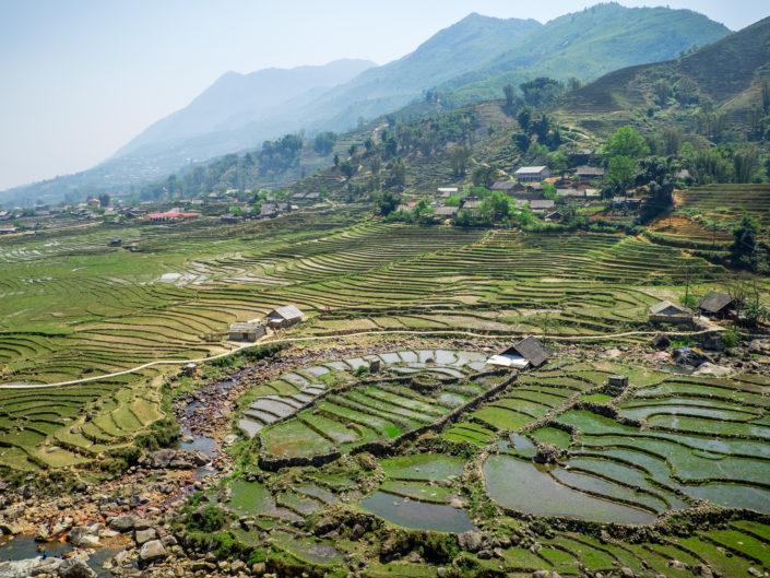 Sapa rice fields in Vietnam
